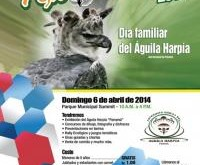 Harpy Eagle Festival 2014