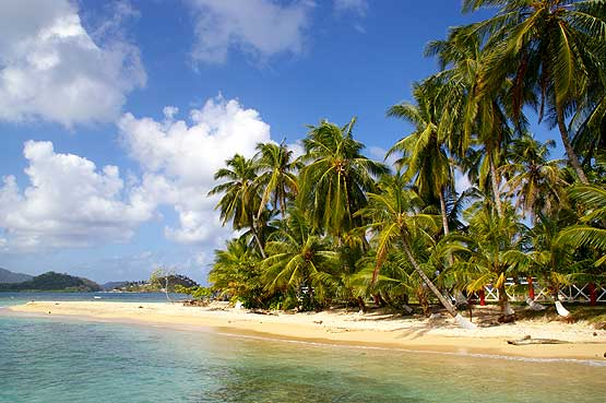 Colons Caribbean Beaches Panama Travel Tips Tours